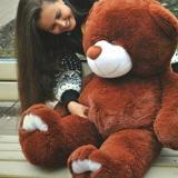 Плюшевый медведь с девушкой