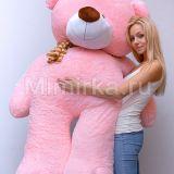 Плюшевый медведь розового цвета